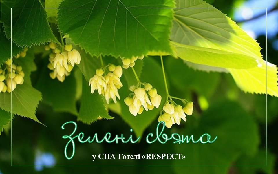 Зелені свята. Традиції святкування та забобони